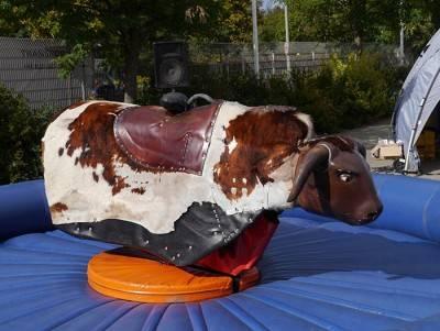 Rodeo Bullriding (blaues Kissen)